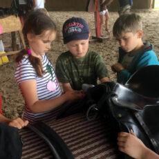 Конно — развлекательный лагерь «В поисках приключений»