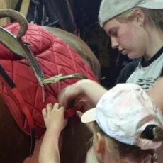 Конно-развлекательный лагерь «Лошади-это дверь в другой мир!»